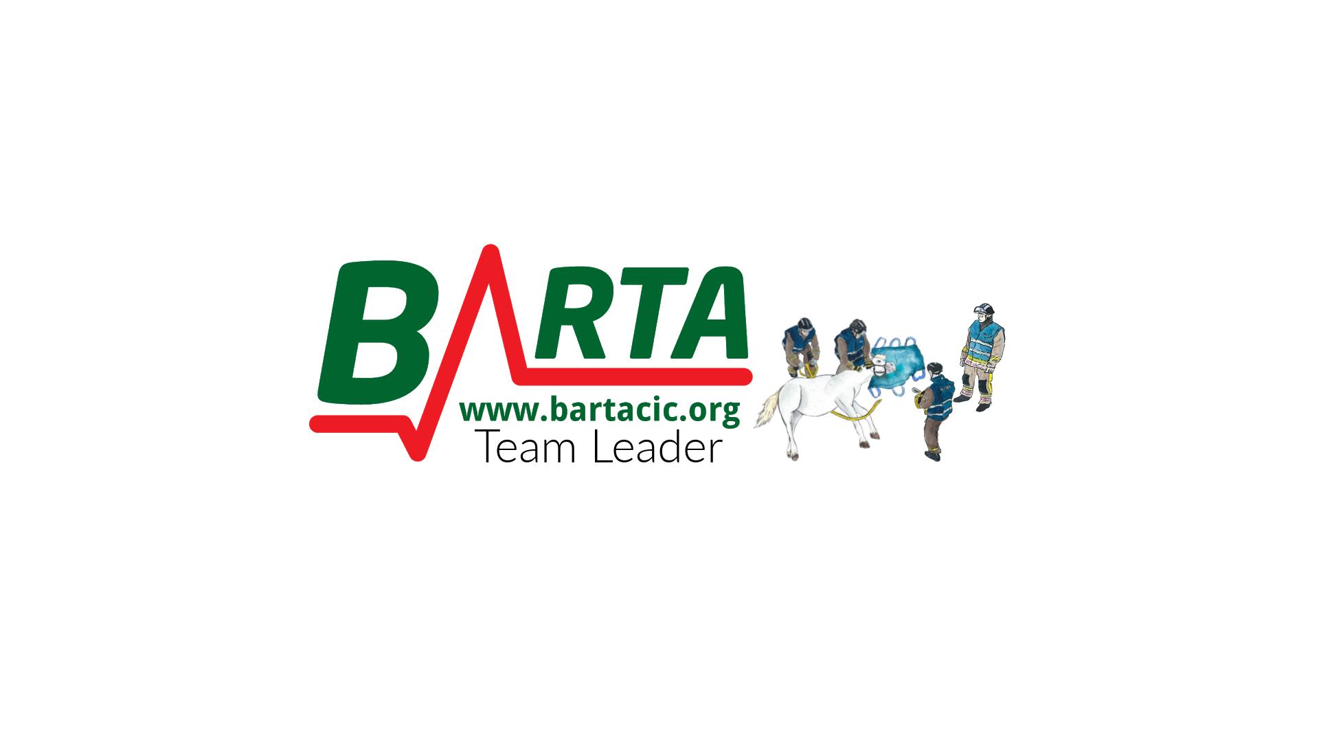 Team Leader.png
